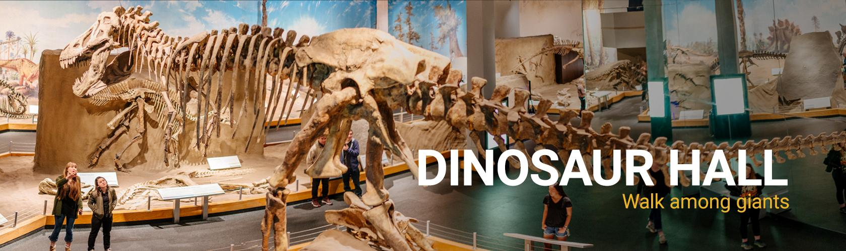 dinosaur-hall-exhibit-slider
